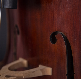 Violines de Luthier | Wood & Good