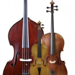 comprar violines violas chelos contrabajos