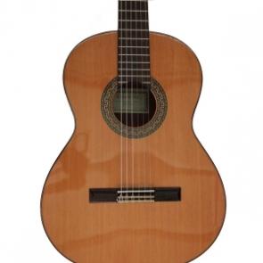 Guitarra clasica y española