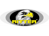 Ritter cases