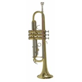 Trompeta Bach TR650