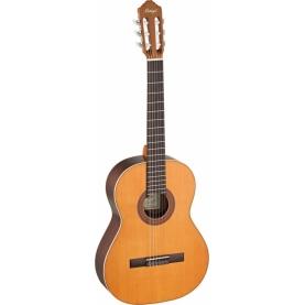 Guitarra Ortega R190G Serie Tradicional