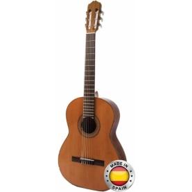 Guitarra Raimundo 104B