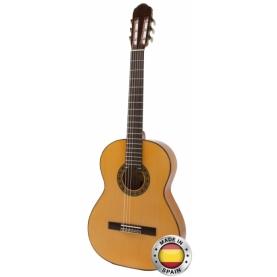 Guitarra Raimundo 125