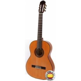 Guitarra Raimundo 126