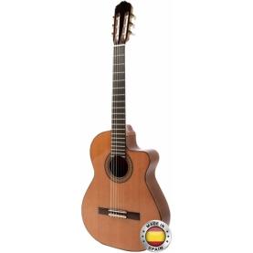 Guitarra Raimundo 660E