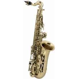 Saxofón Alto Roy Benson Para Niños AS-201