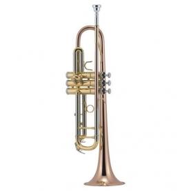 Trompeta J.Michael 450