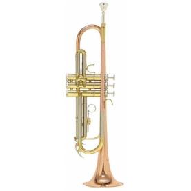 Trompeta Roy Benson TR-202G